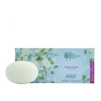 Orchard Blossom 3 x 100 g Luxus Seife