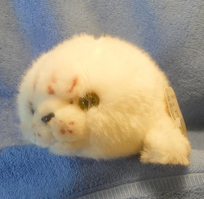 Seehund klein, weiß